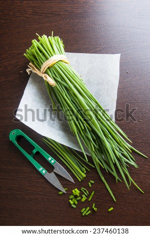 Welsh onion bunch and secateurs on wooden table - stock photo