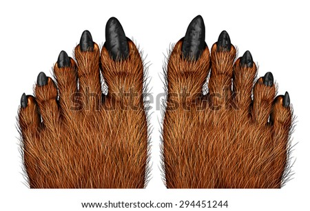 Werewolf feet as a creepy creature for halloween or scary symbol with textured hairy and textured foot skin with cursed wolf monster toes on a white background. - stock photo