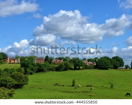 West Bromwich UK, horses in a pasture, meadow, grass, trees and clouds on a blue sky.