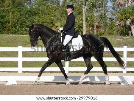 WEST PALM BEACH, FLORIDA - APRIL 25: Robin Sheehan and Kokholmâ's Fairchild competing in the Wellington Classic Dressage Challenge III on April 25, 2009 in West Palm Beach.