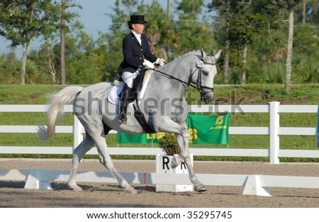 WEST PALM BEACH, FLORIDA - JUNE 24: Kirsten Baier and Carizma compete in the Wellington Classic Dressage in the Tropics event on June 24, 2009 in West Palm Beach