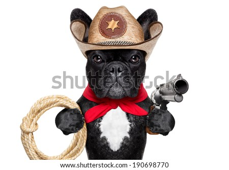western cowboy dog with rope , red scarf and pistol - stock photo
