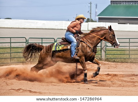 Western Horses Pictures Western Horse And Rider