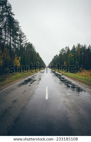 wet asphalt road with sun reflections and trees. Vintage photography effect. Retro grainy color film look. - stock photo