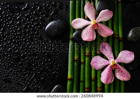 Wet background -beautiful pink orchid with black stones on bamboo grove  - stock photo