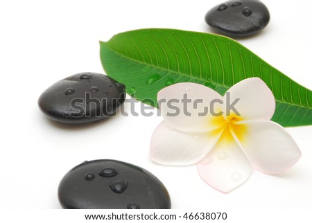 wet massage stones with frangipani flower and leaf