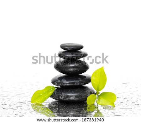 Wet pebble stones with green leafs - stock photo