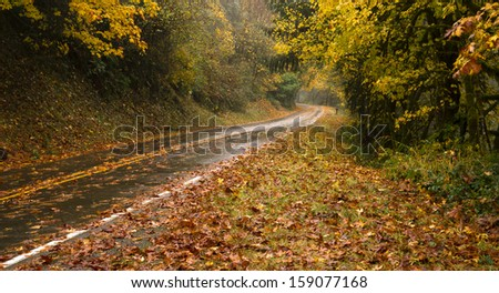 Wet Rainy Autumn Day Leaves Fall Two Lane Highway Travel - stock photo