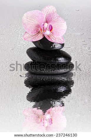 Wet Spa stone pyramid and orchid flower with reflection - stock photo