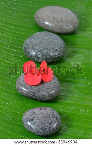Wet stone and banana leaf with red flower