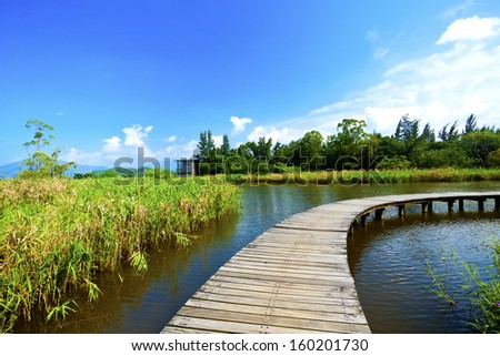 Wetland wooden path in summer  - stock photo