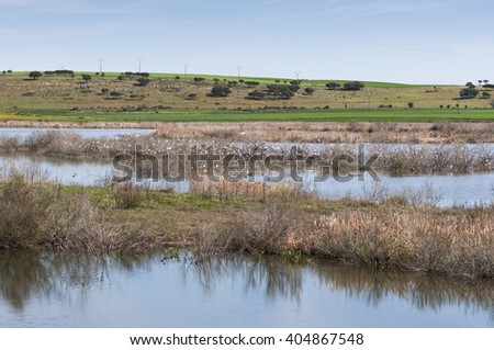 Wetlands associated with de River Guadiana, next to the Vicario Reservoir, in Ciudad Real Province, Spain - stock photo