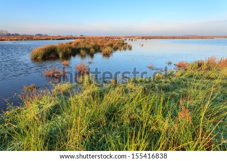 Wetlands landscape on a sunny day in Holland - stock photo