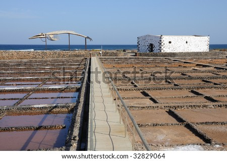 Whale skeleton and saline in Caleta de Fuste, Fuerteventura Spain - stock photo