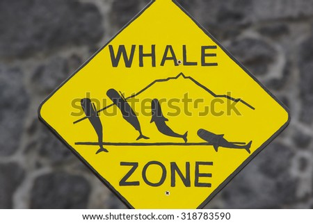 Whale watching signpost and blurred background in Azores. Portugal. Horizontal - stock photo
