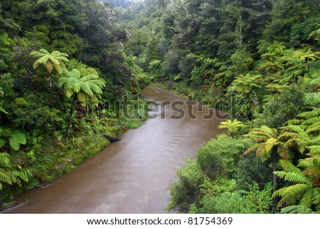 Whanganui river and national park on north island of New Zealand - stock photo