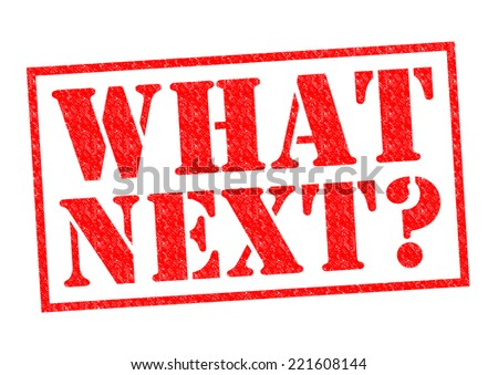 WHAT NEXT? red Rubber Stamp over a white background. - stock photo