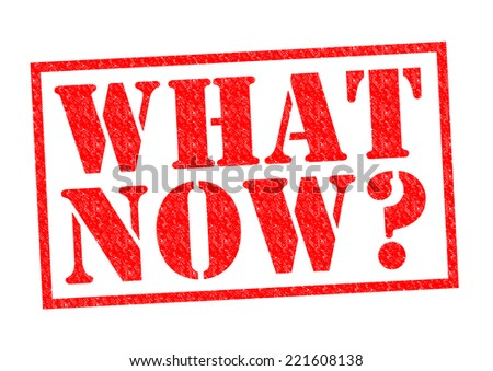 WHAT NOW? red Rubber Stamp over a white background. - stock photo