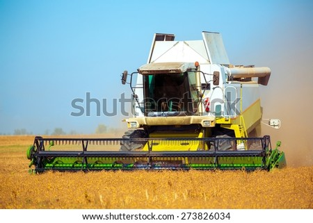 Wheat, Agriculture, Harvesting. - stock photo