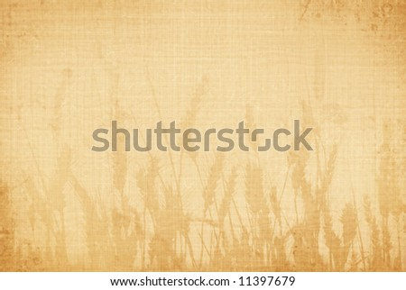wheat background - stock photo