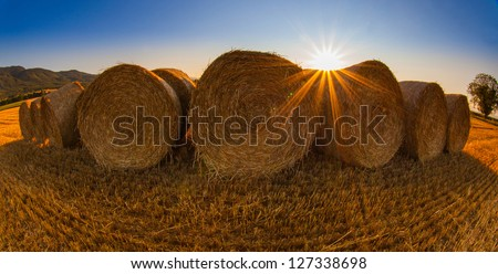 Wheat bale and the morning sun - stock photo
