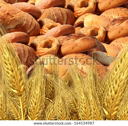 Wheat bread harvest food and agriculture farming concept with a group of baked goods from a bakery or home cooking and a field of durum semolina plants growing on a farm.