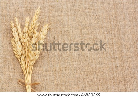 Wheat Ears border on Burlap background.with copy-space