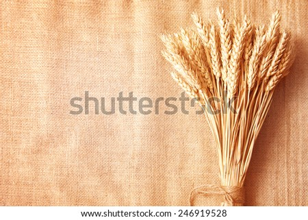Wheat ears border on old burlap background - stock photo