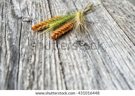 Wheat ears on an old wooden table - stock photo