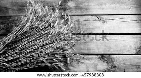 Wheat ears on old wooden background,black and white photo - stock photo