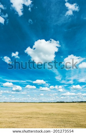 wheat field and sky view from height - stock photo
