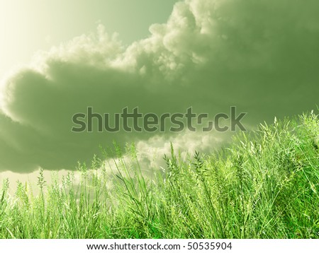 Wheat field in the storm - stock photo