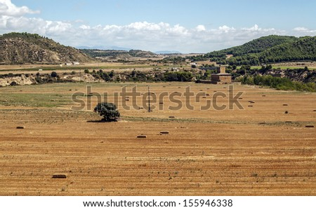 Wheat field located in the Spanish province of Teruel, a side is a small castle and mountain background with trees - stock photo