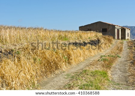 Wheat Field on the Hills in Sicily - stock photo