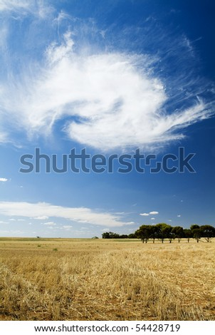 Wheat fields and cloud formations - stock photo