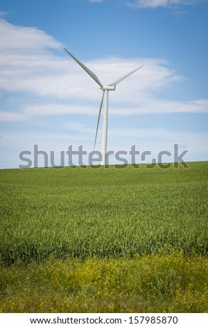 Wheat fields and wind turbines under a summer clouds in Washington State