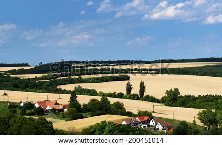 Wheat fields landscape in summer time, Hungary - stock photo