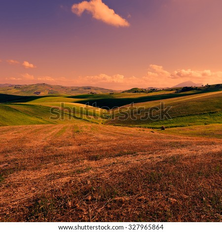 Wheat Fields on the Hills of Sicily at Sunset - stock photo