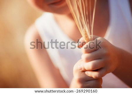 wheat germ in the hands of a child - stock photo