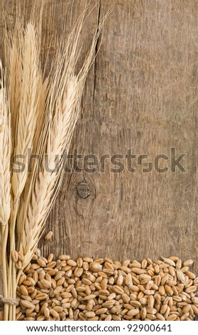 wheat grain and ear on wood texture background - stock photo