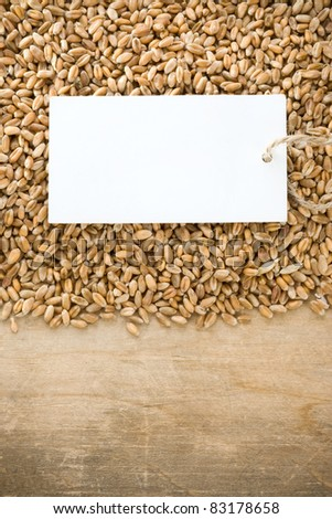 wheat grain and tag price on wood background - stock photo