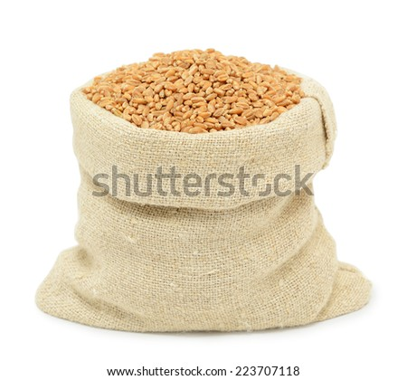 Wheat grain isolated on white background