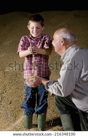 Wheat grains falling from hands of farmer and grandson - stock photo