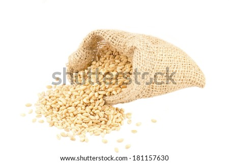 Wheat grains in a small burlap bag isolated - stock photo