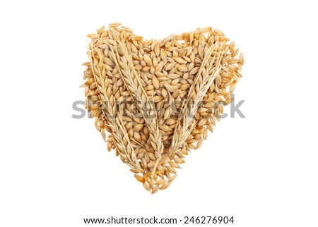 Wheat grains with ears of wheat in a heart shape isolated against white