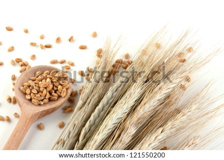 Wheat in a wooden spoon - stock photo