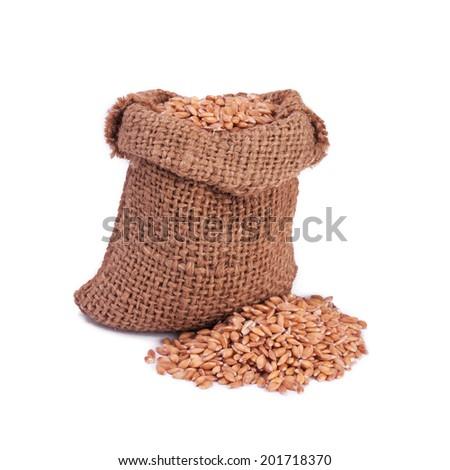 Wheat in small burlap sack - stock photo