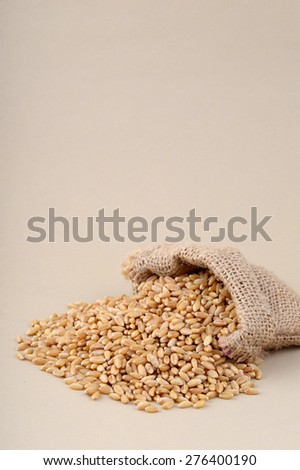Wheat in small sack  - stock photo