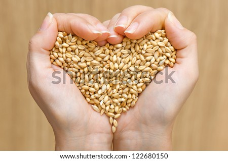 Wheat in woman's hands forming heart shape - stock photo