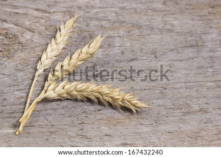 wheat on a wooden background